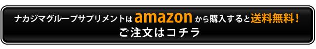 ナカジマグループサプリメントはamazonから購入すると送料無料!