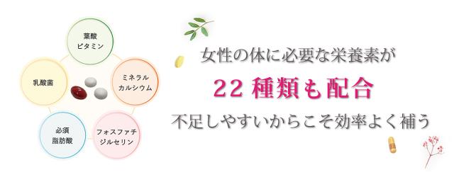 栄養素を27種類