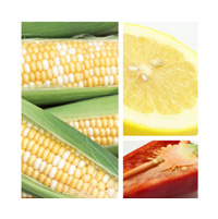 ビタミンCの種類